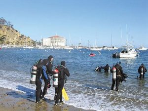 37th Annual Avalon Harbor Underwater Cleanup